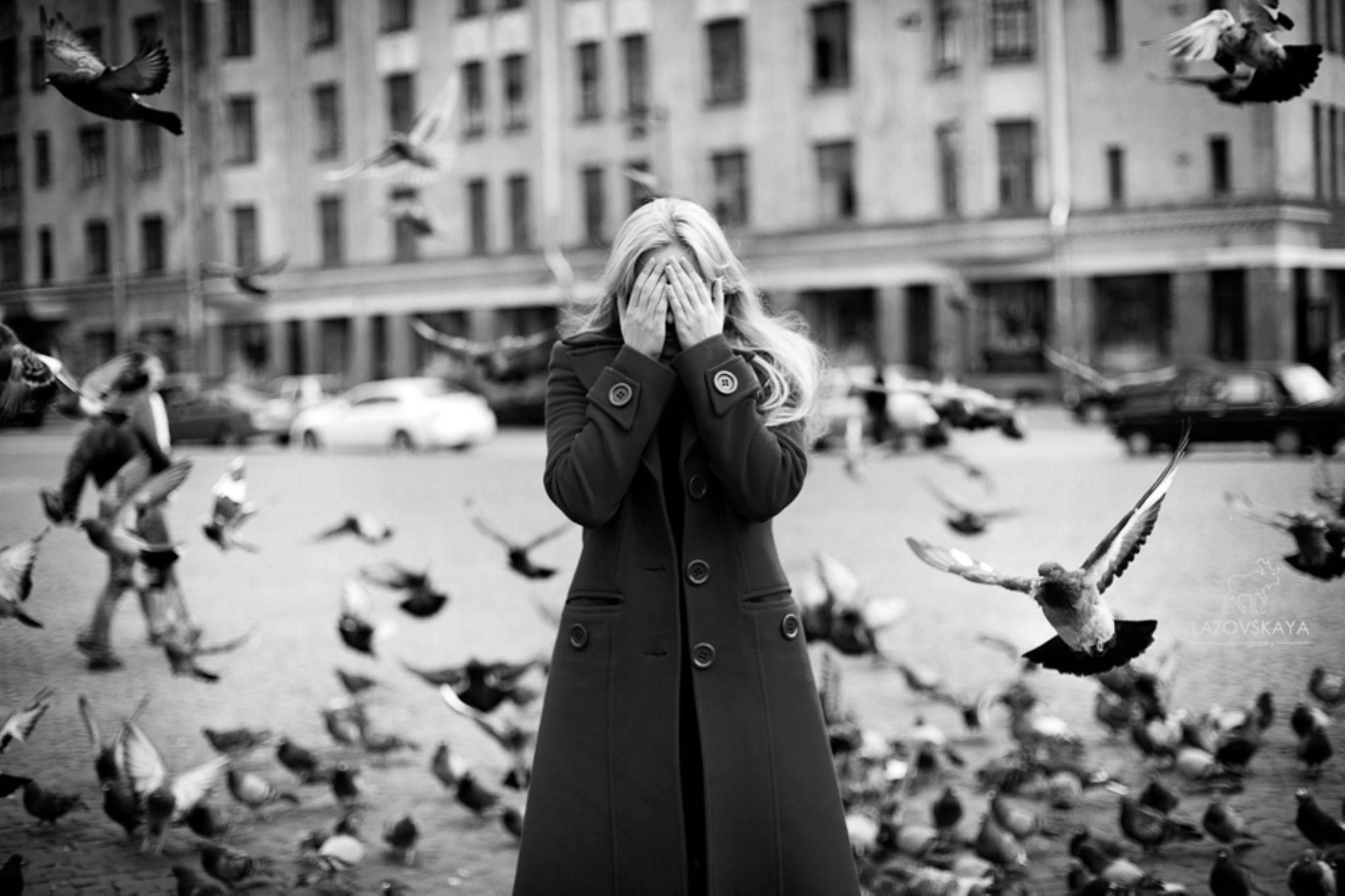 Birds  by Anna Phillips