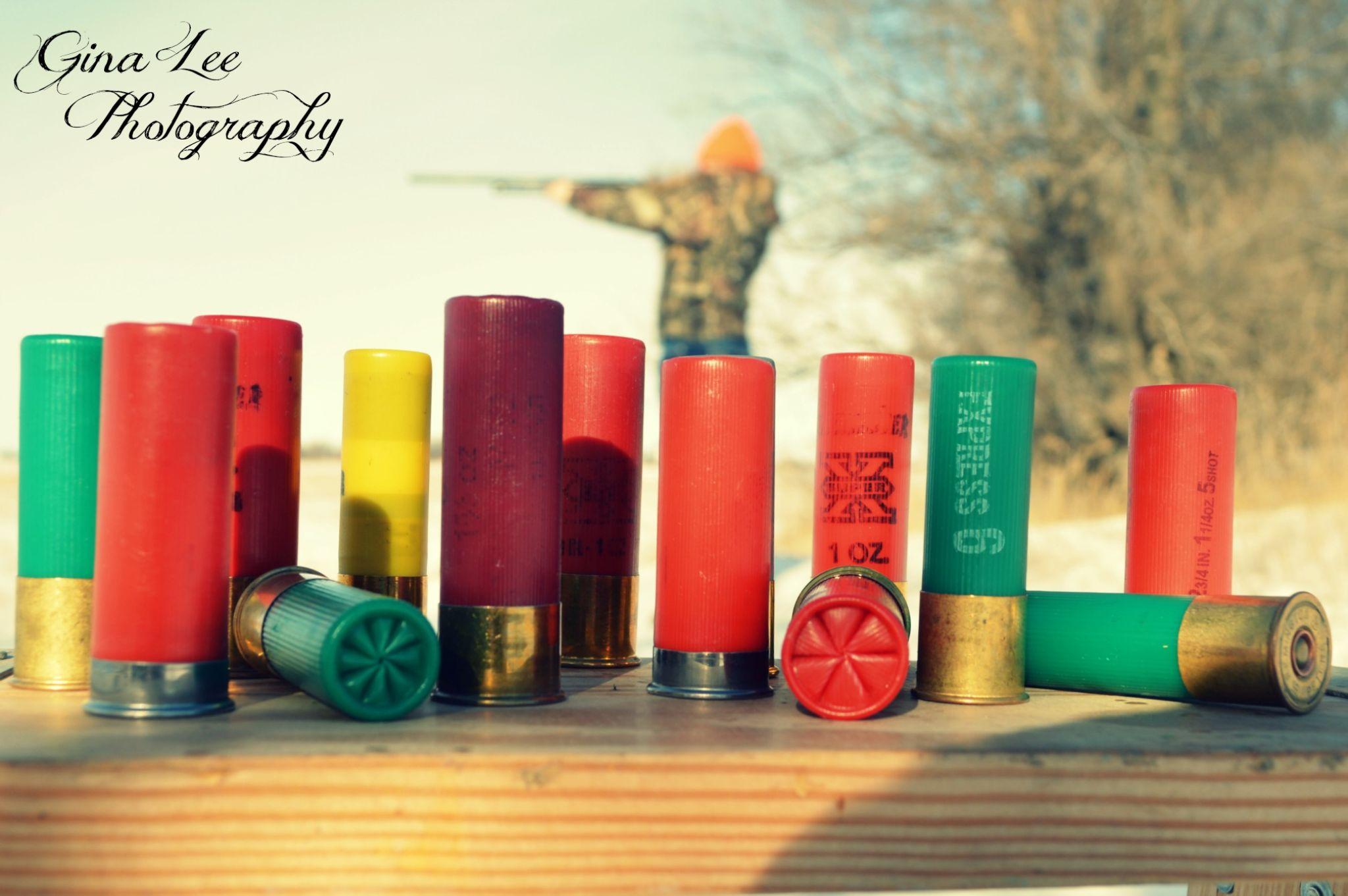 shells2 by GinaLeeGils