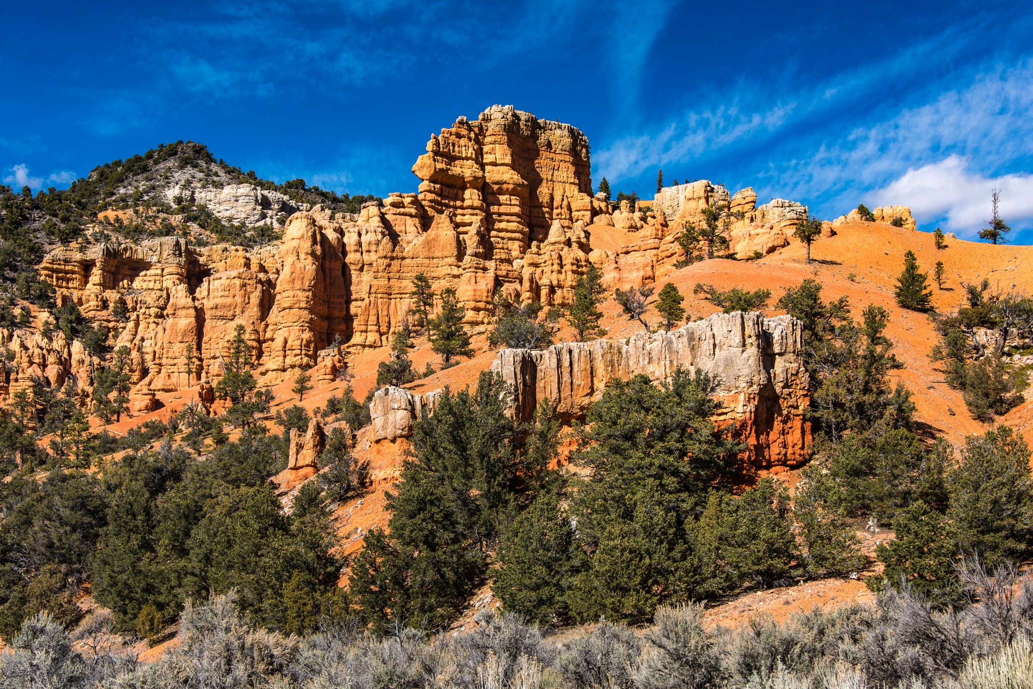 Photo in Landscape #red canyon #red canyon utah