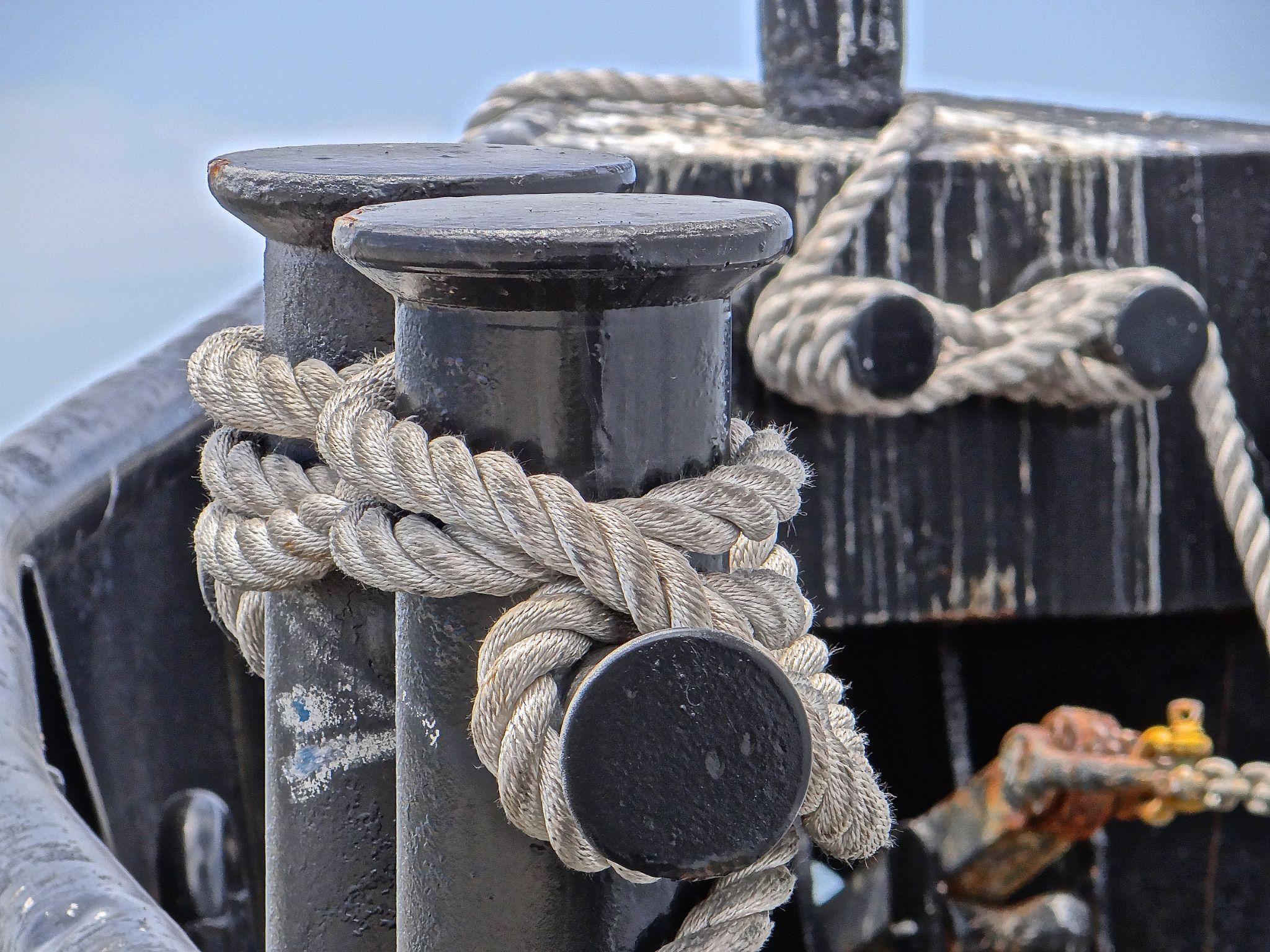 Boat Ties by Steve Aicinena