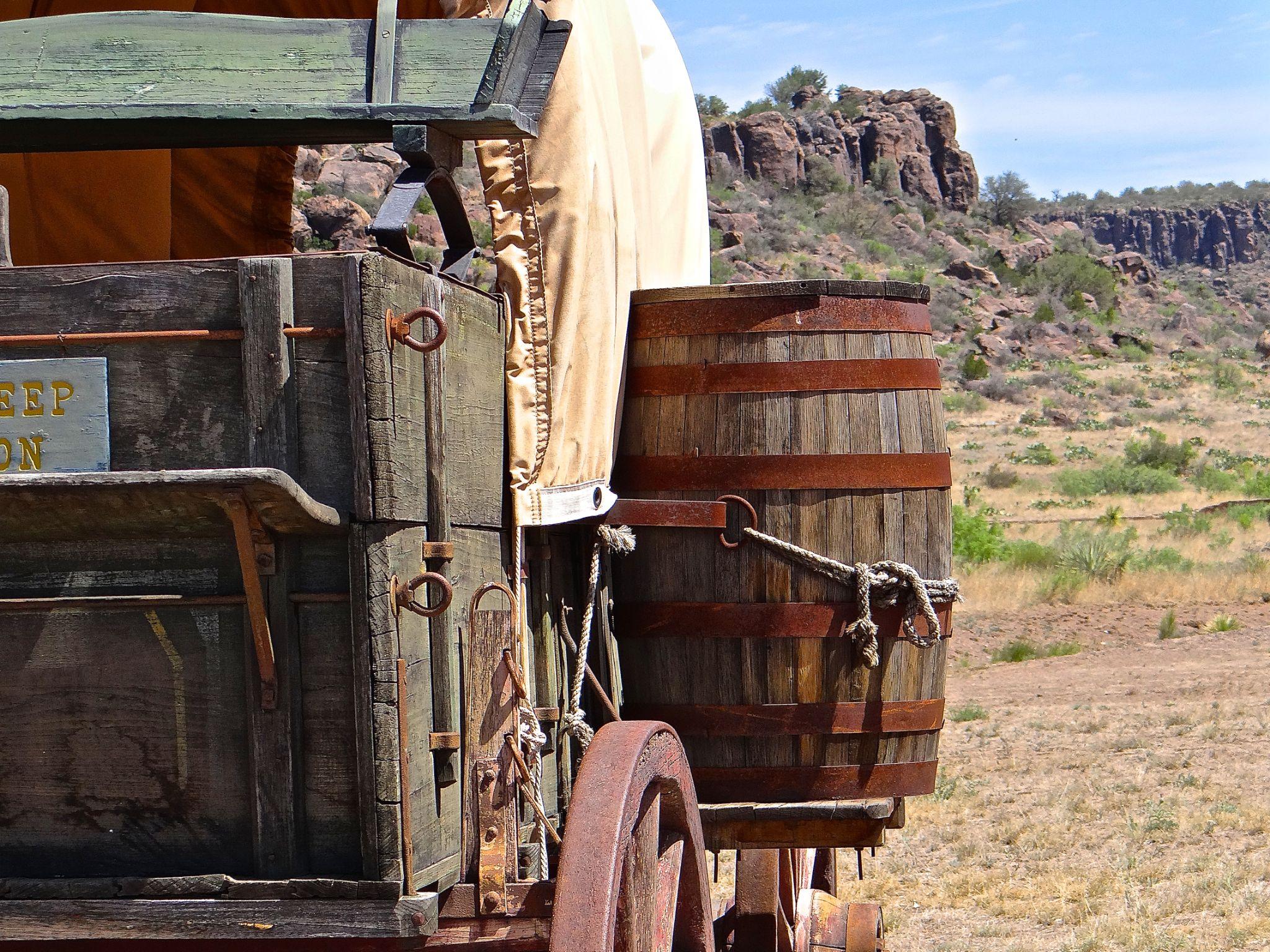 Water Barrel on Wagon by Steve Aicinena