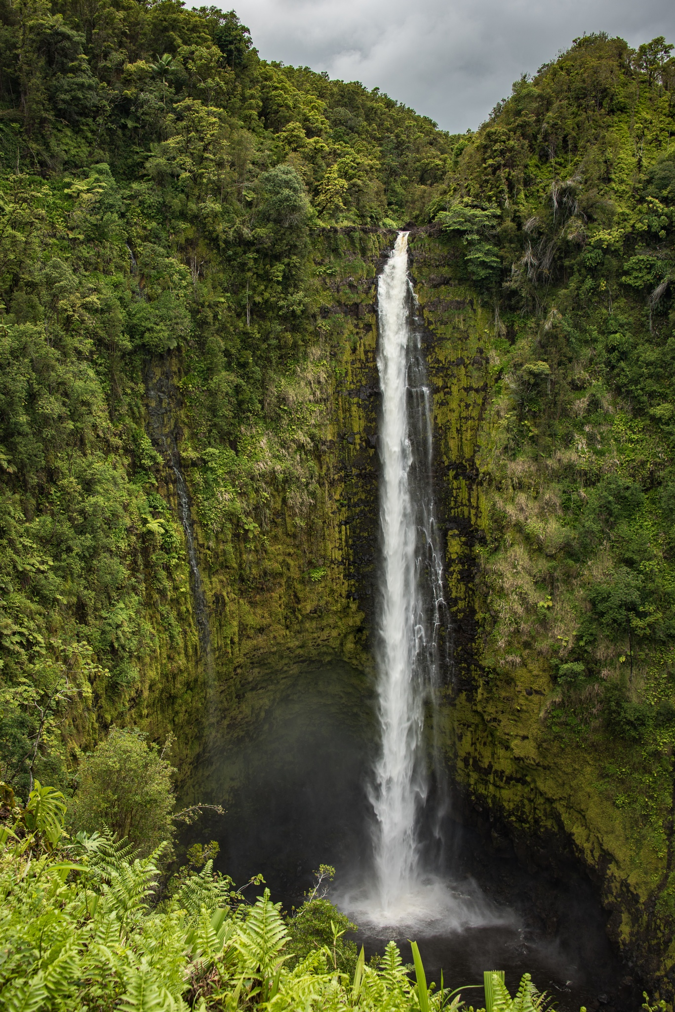 Hawaiian Waterfall by Steve Aicinena