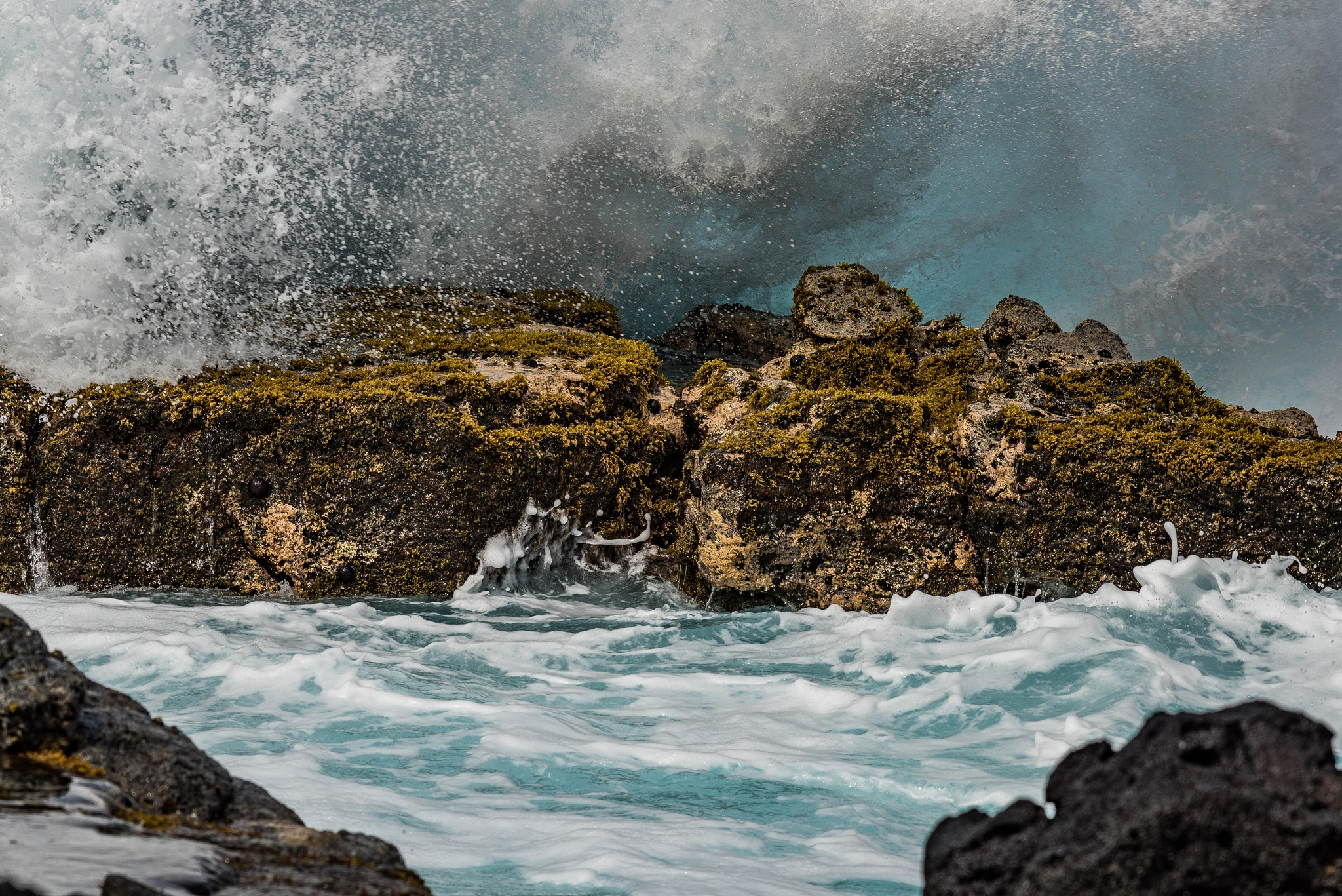 The Wave Crashed Upon the Shore by Steve Aicinena