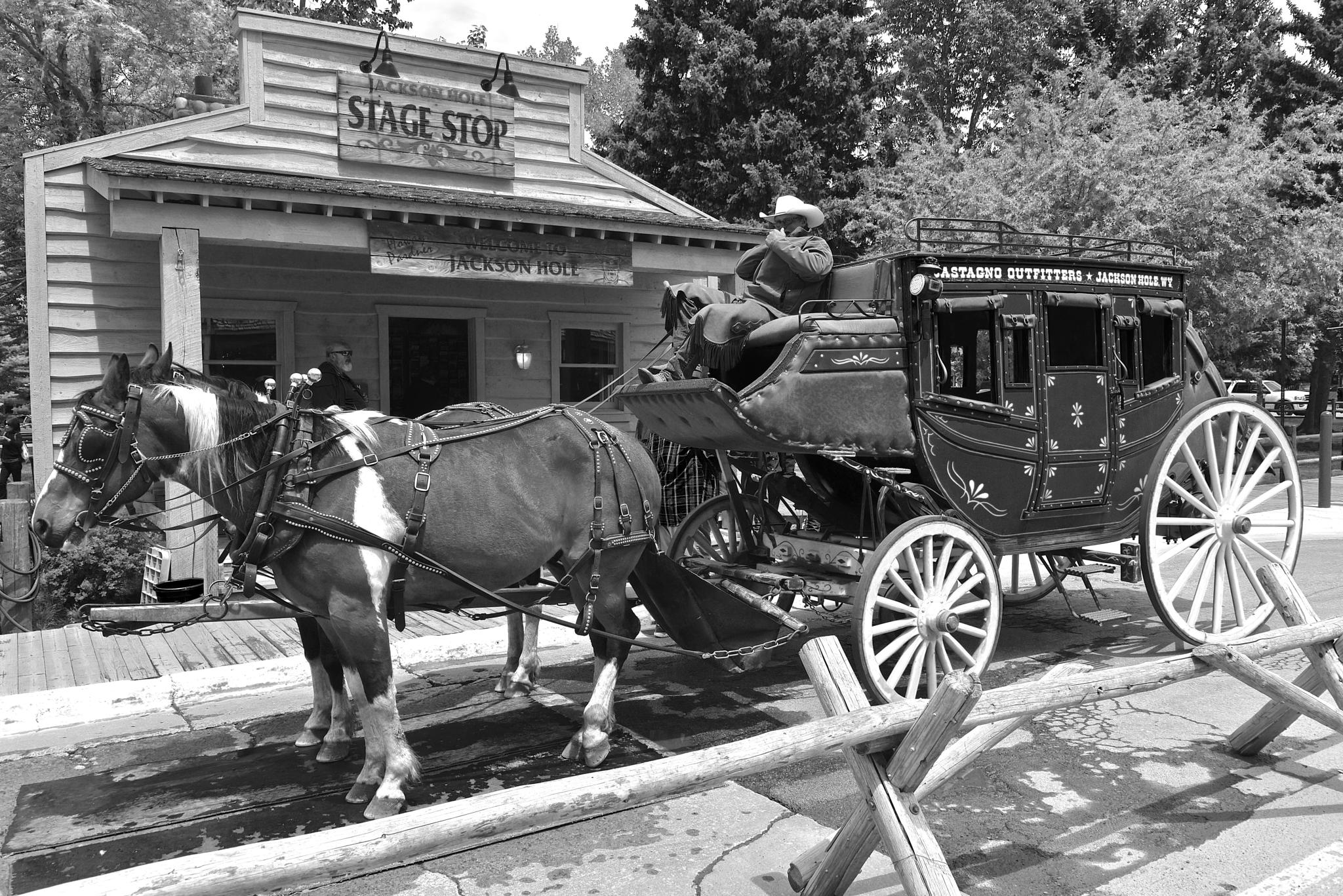 Stagecoach Black and White by Steve Aicinena