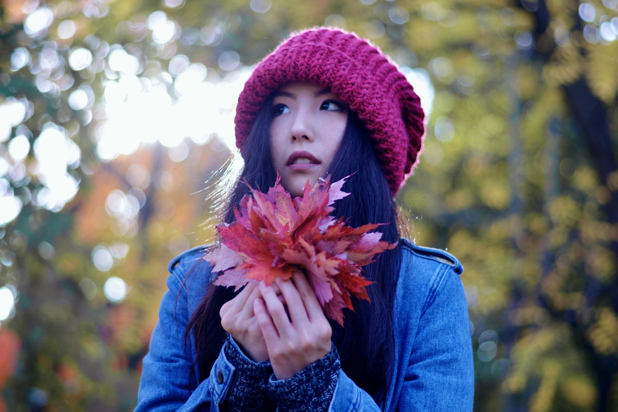 Ah..autumn in montreal by Yoko D