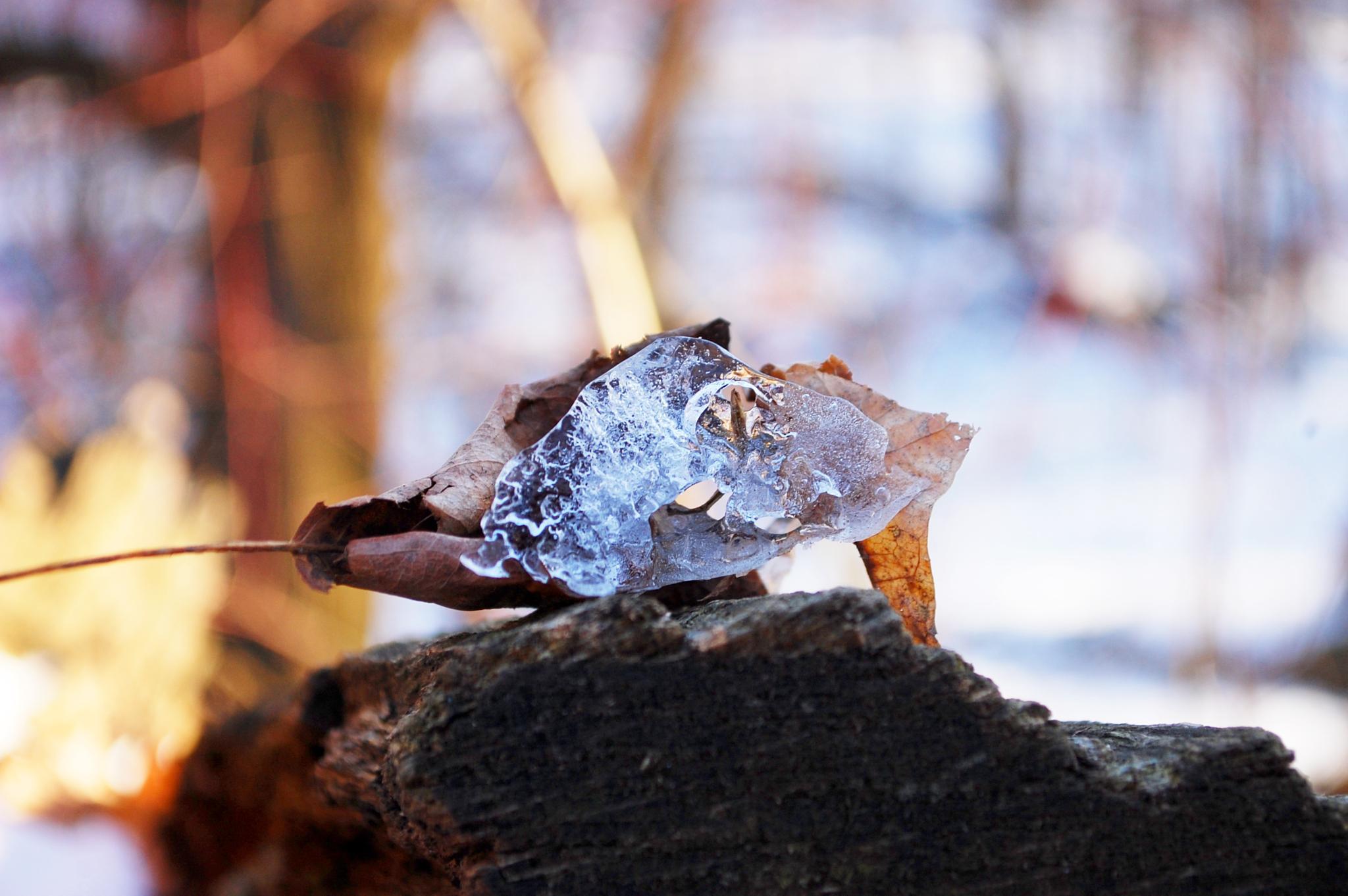 Ah..melting ice by Yoko D