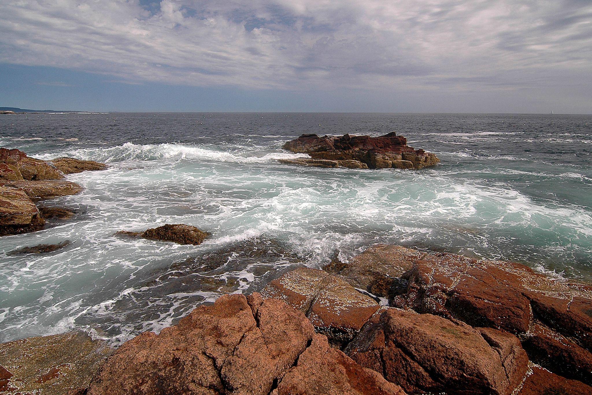 Maine coast by Richard Hood