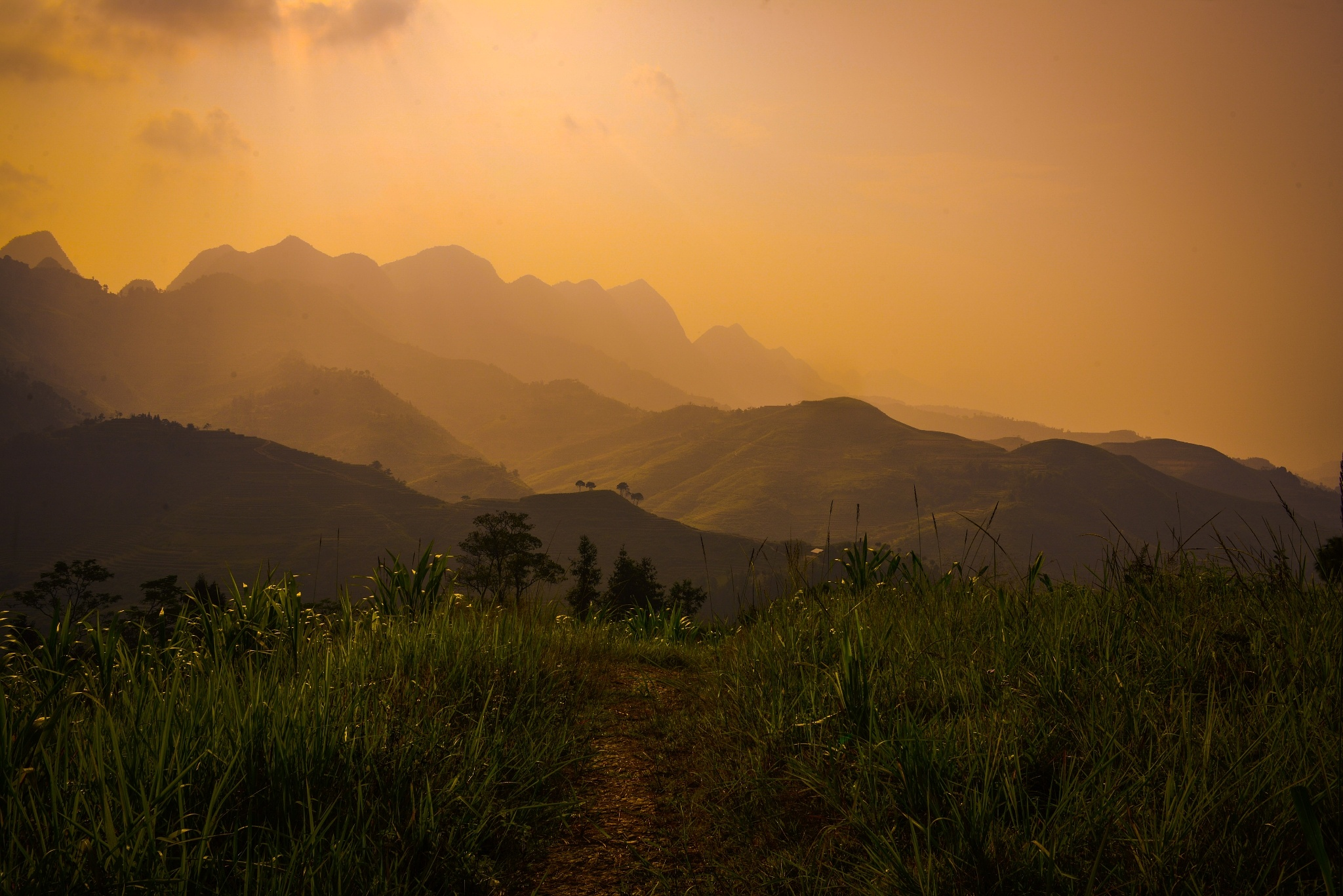 Small road with a view by Cuong NM
