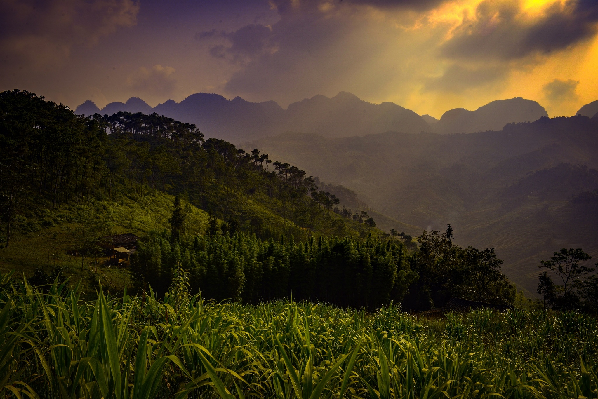 A mountain view by Cuong NM