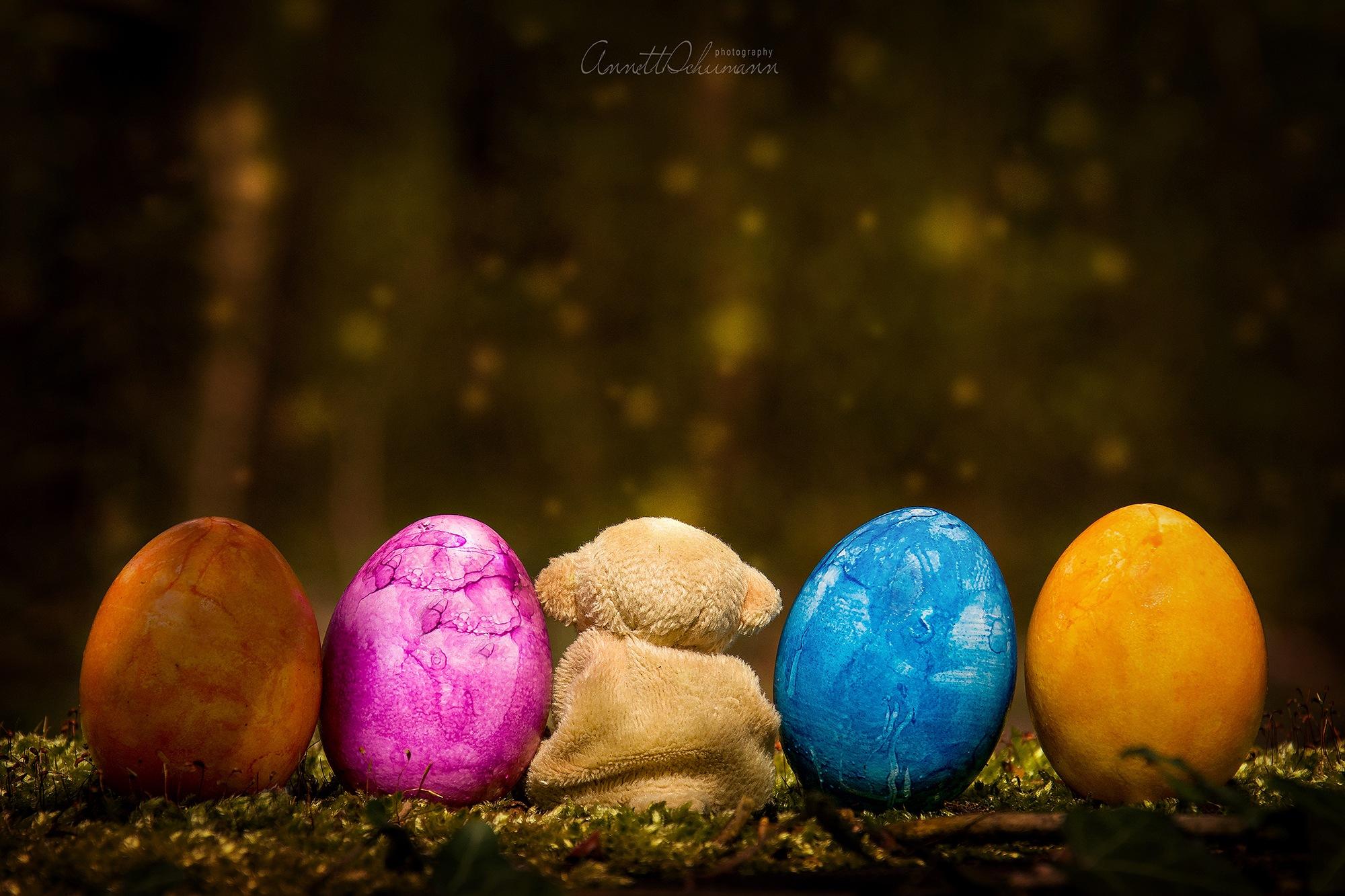 little baer and the easter eggs by Annett Schumann
