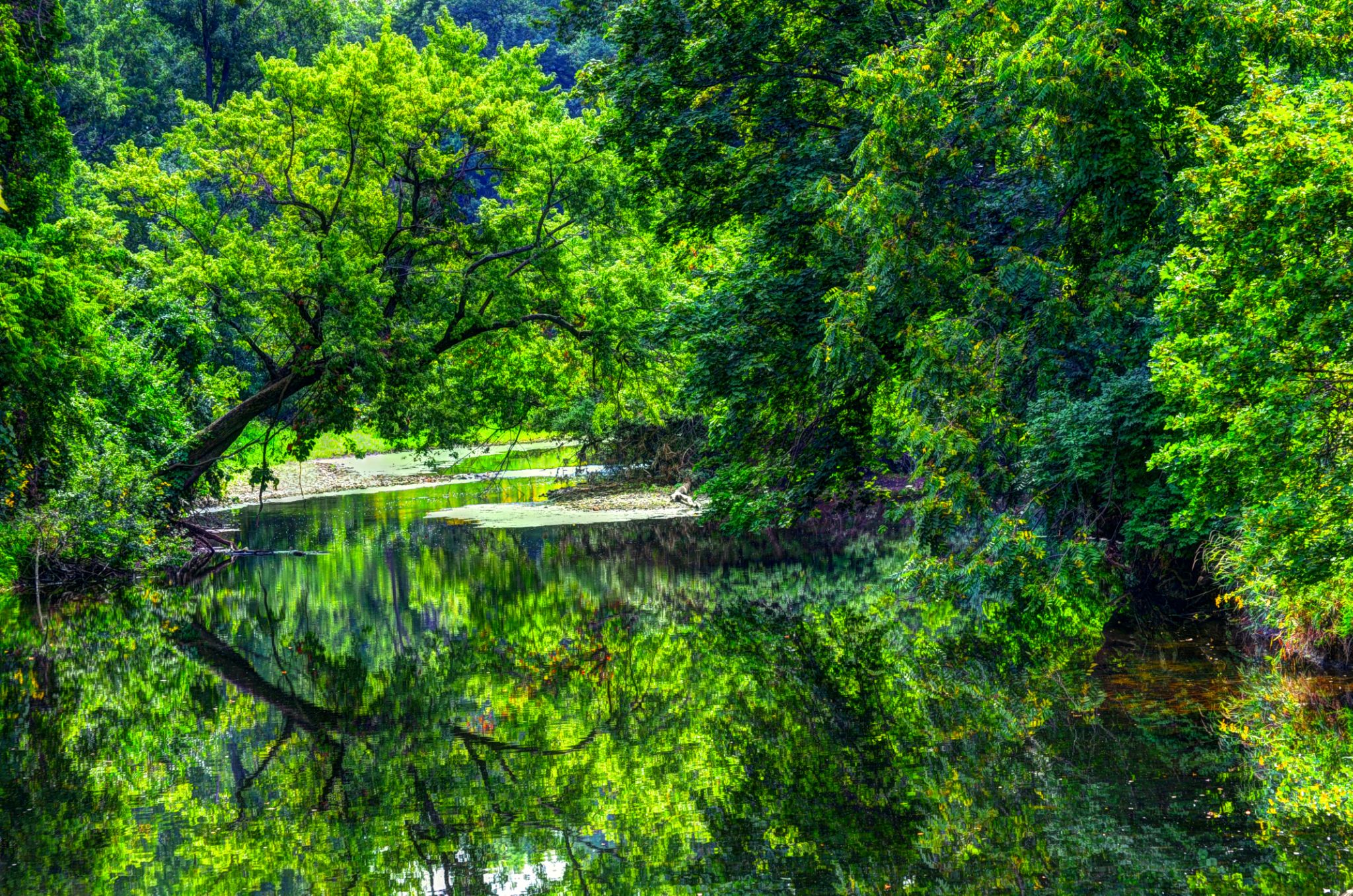 Summer Reflection by J. Philip Larson Photography