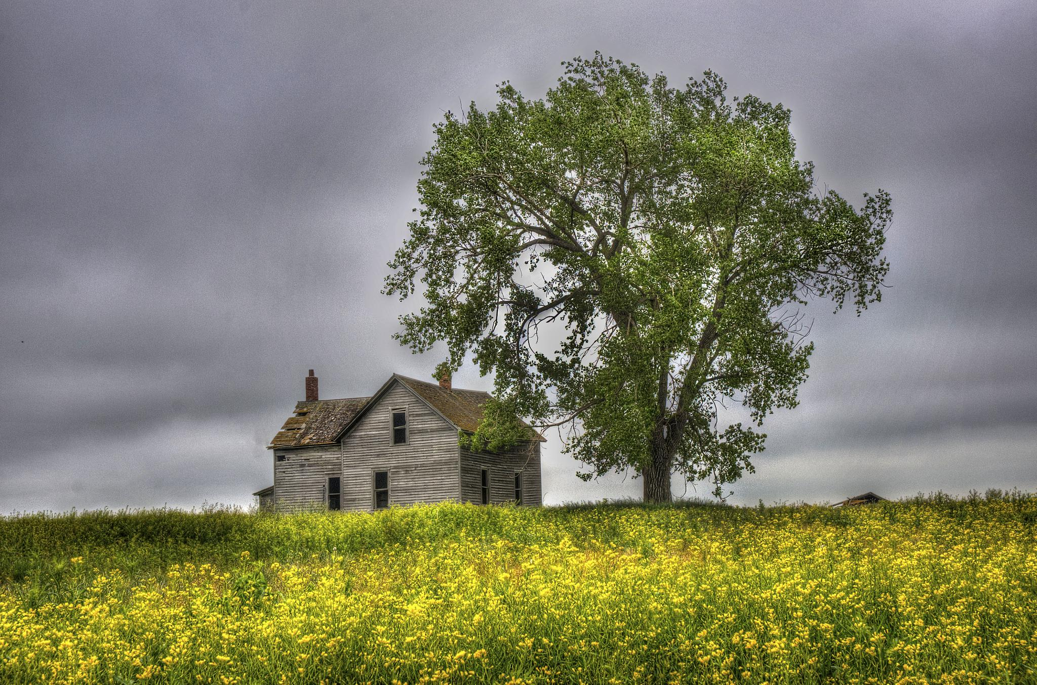 Abandoned on the Great Plains by J. Philip Larson Photography