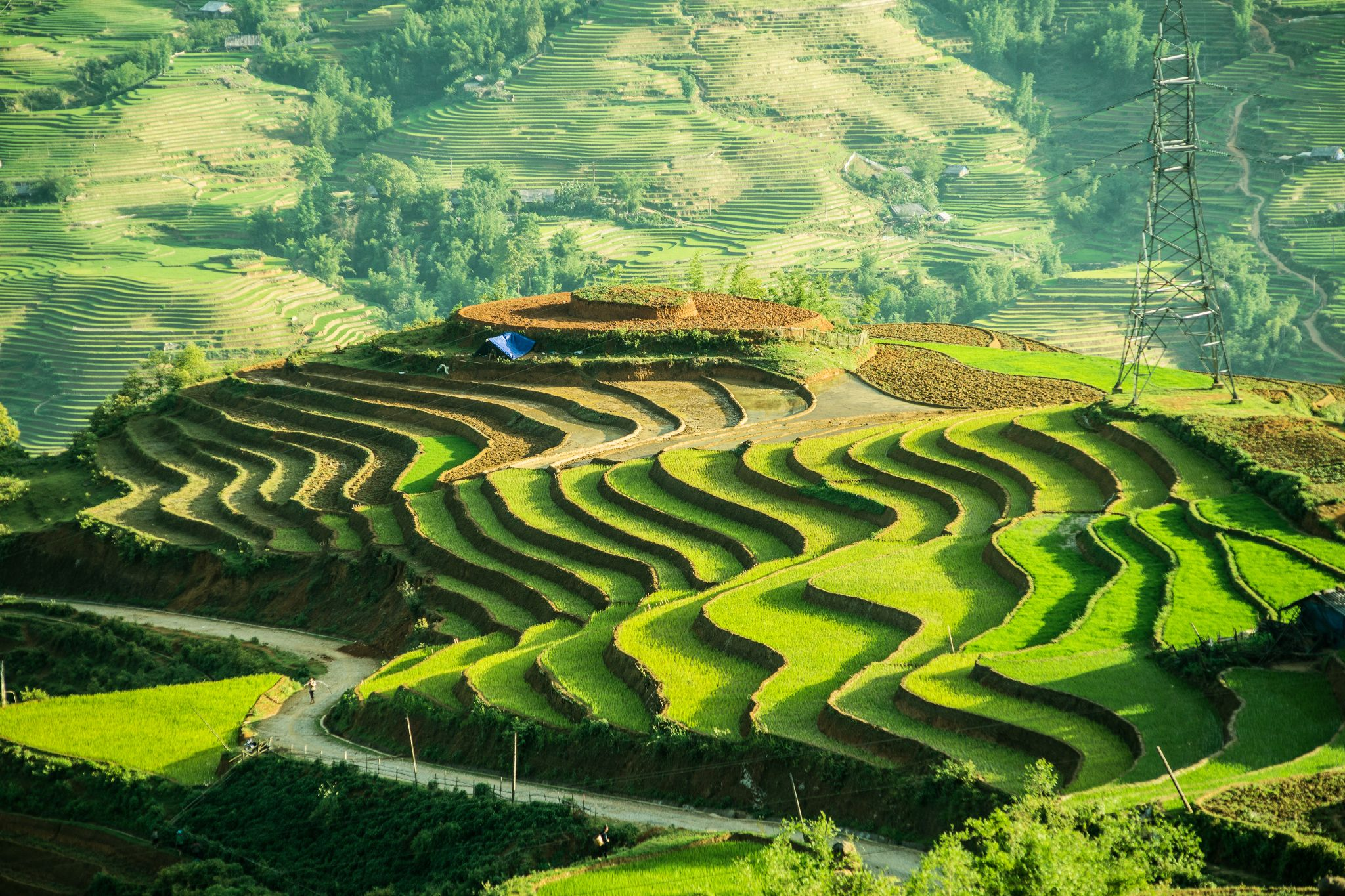 Terraced fields in Sapa, Lao Cai by NguyenTrangKimCuong