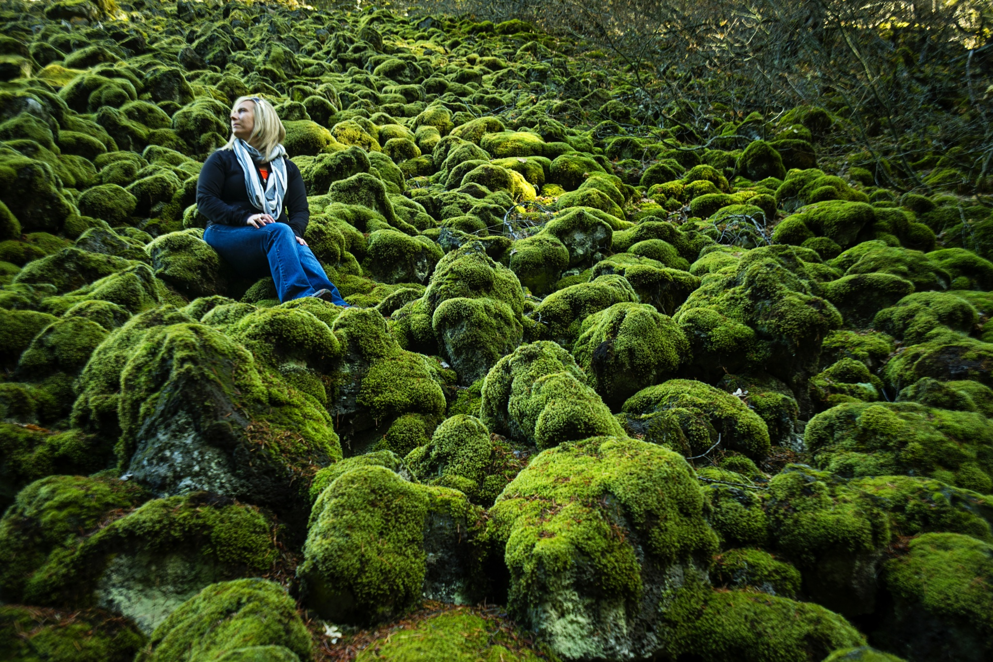 Moss by stephen.brown.5682