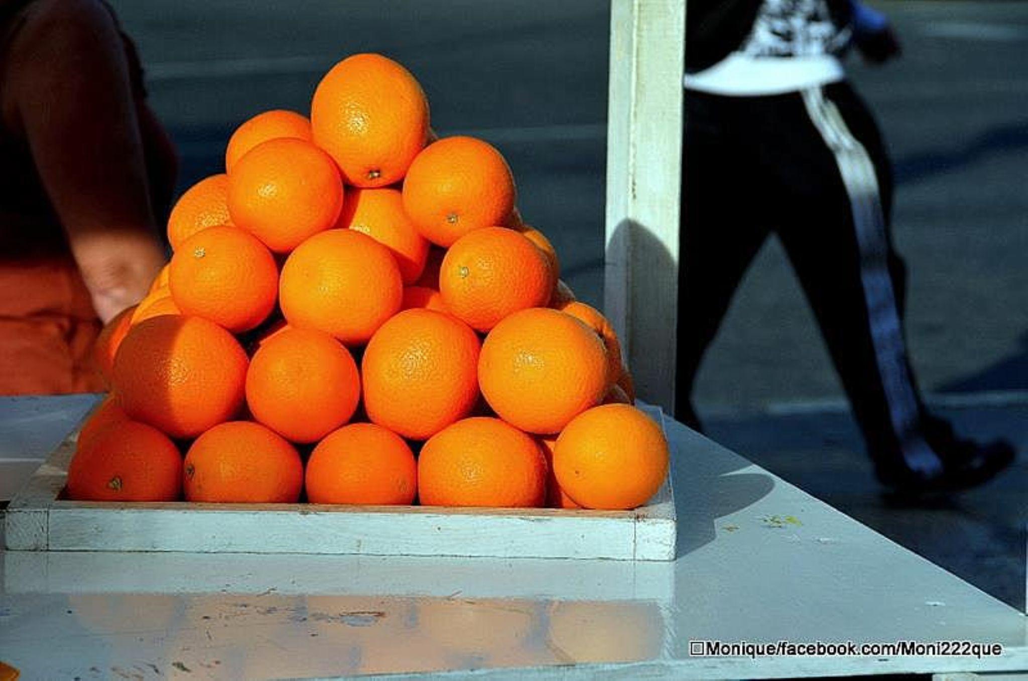 Orange Appeal  by monique222