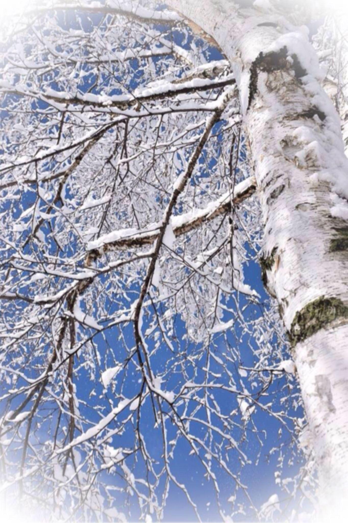 winter blue by kjoinman