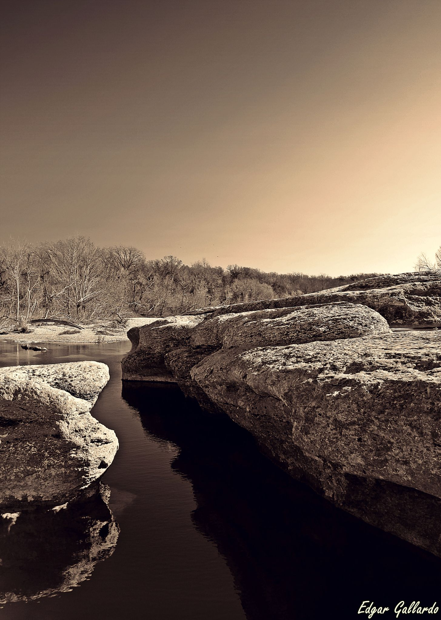 Reflection By: www.edgargallardophotography.com by Edgar Gallardo Photography (Raw Nature)