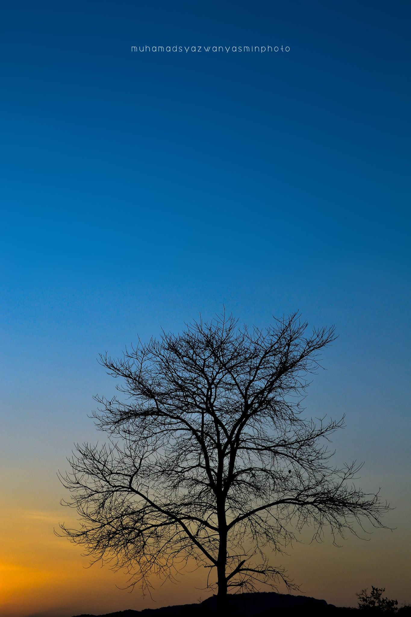 silhoutte perlis by Syazwan Yasmin Photography