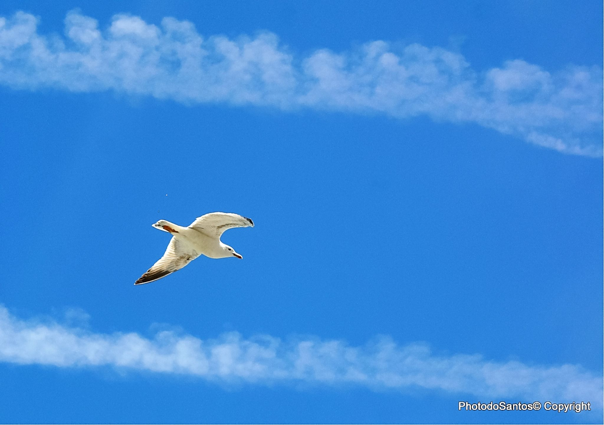 Autoroute sky by Ricardo Santos