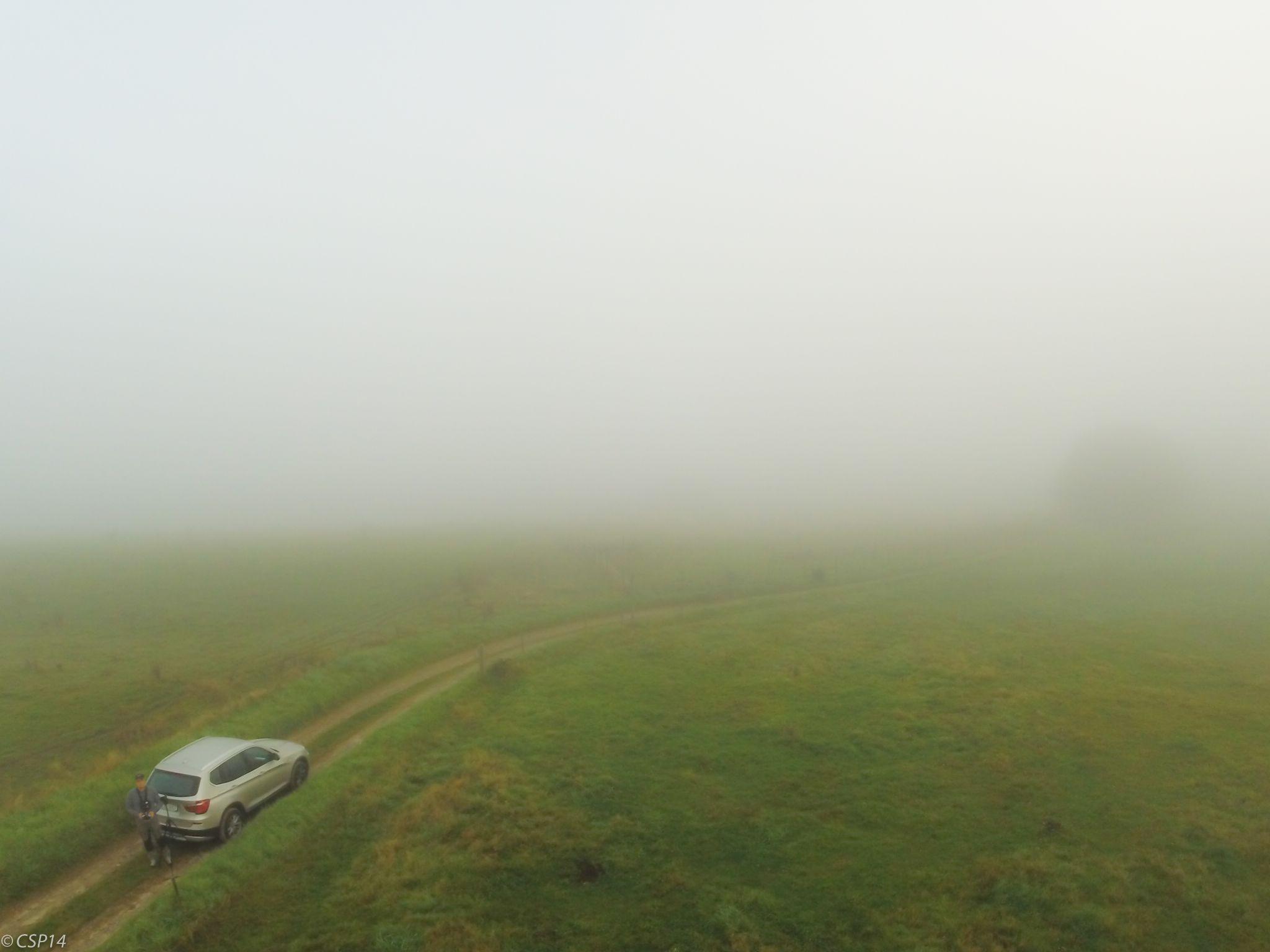 Morning mist by QuestForLight&LAS