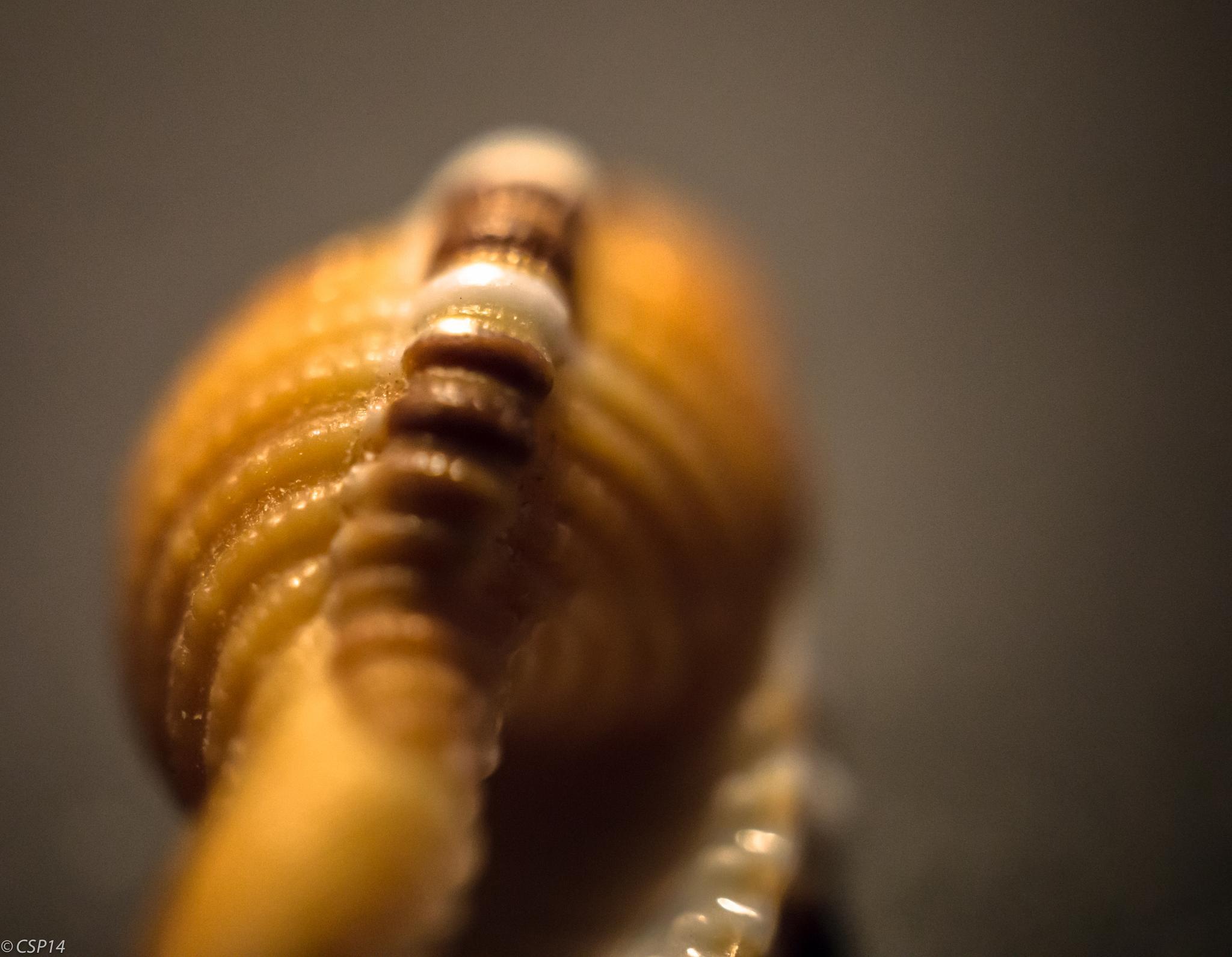 Lisbeth's sea shells 2 by QuestForLight&LAS