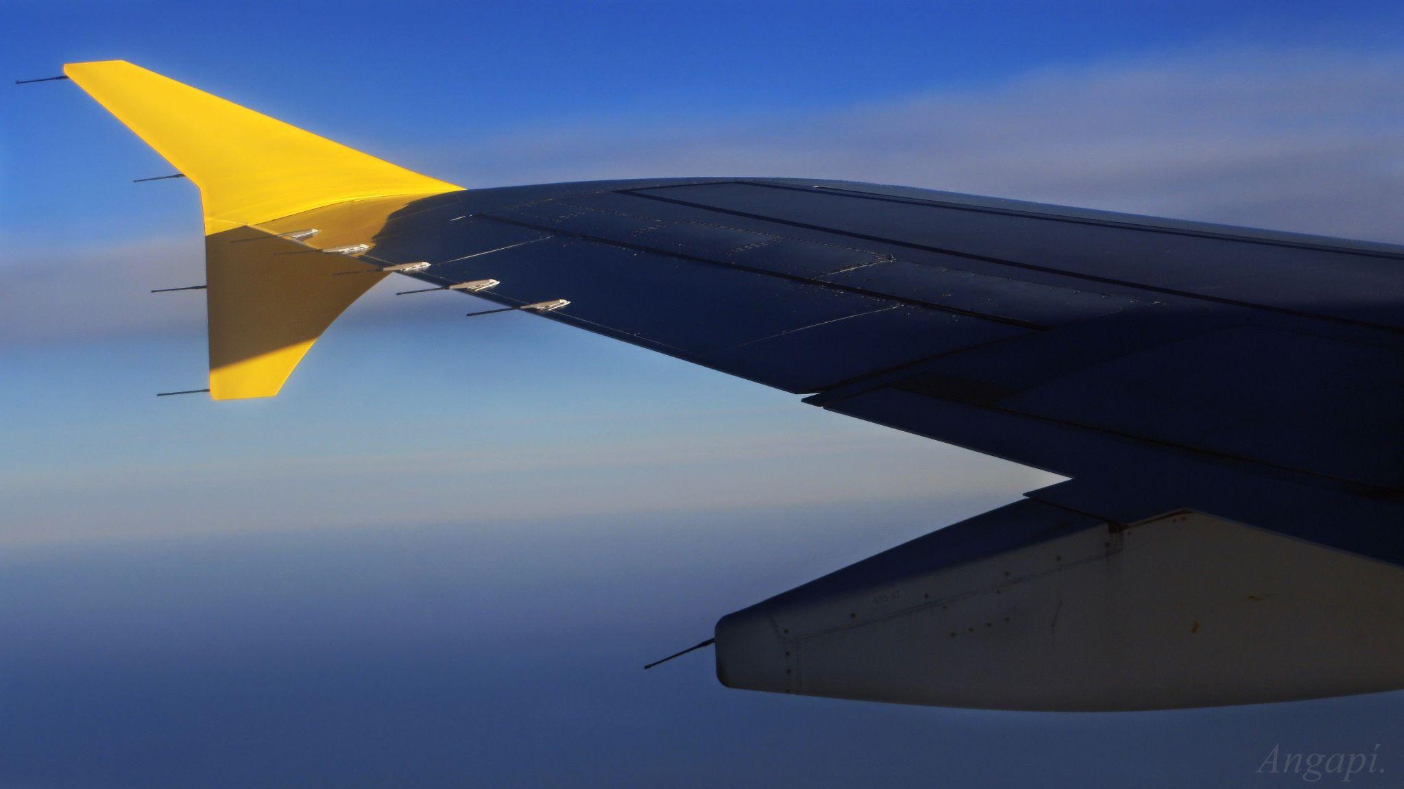 Volar. by Angapi