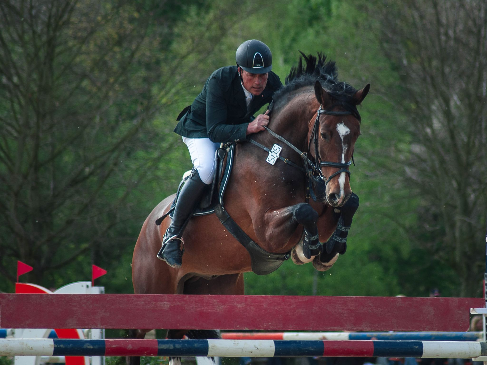 Horsejumping  by norbert.stojke