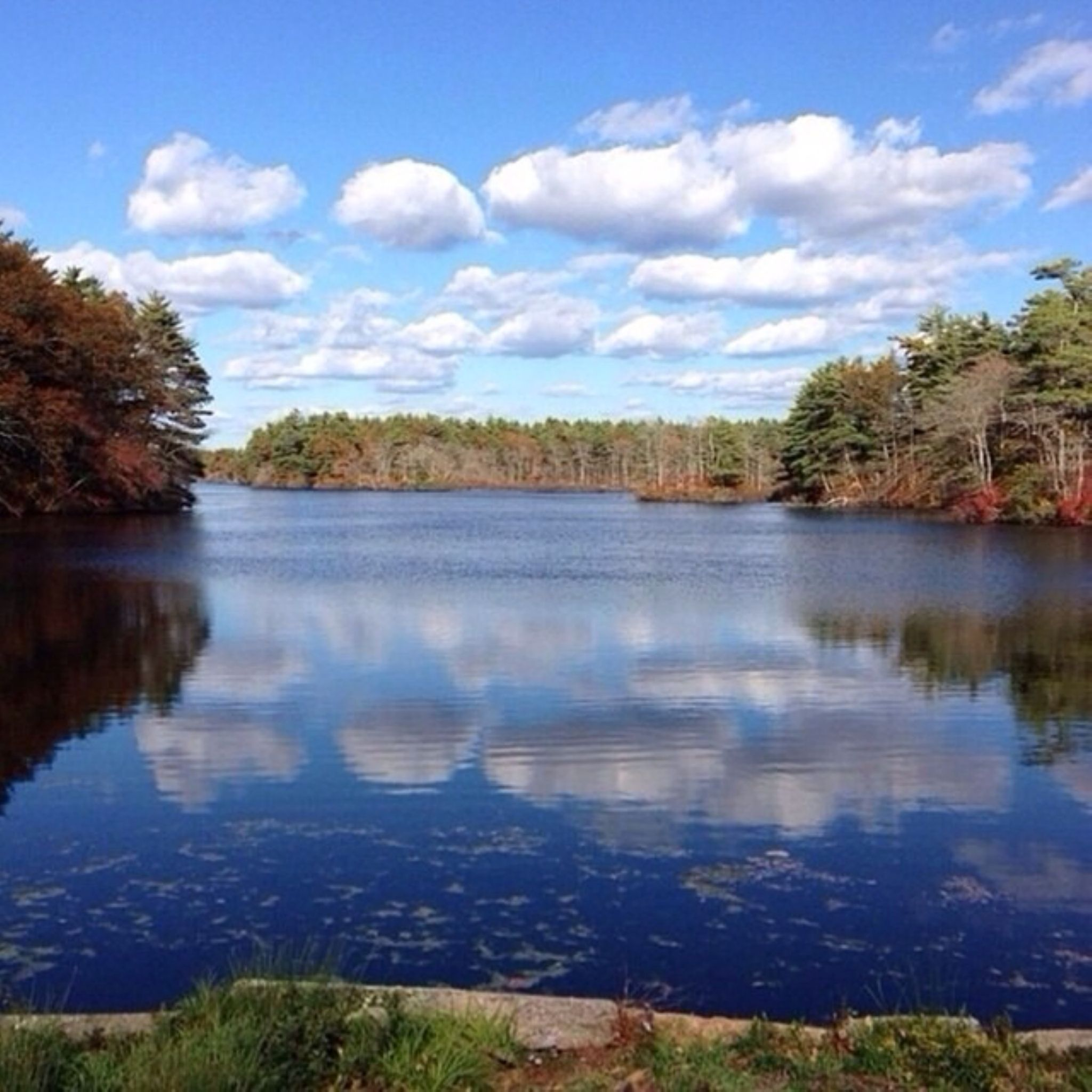 Clouds Over a Pond by Lillie Marie