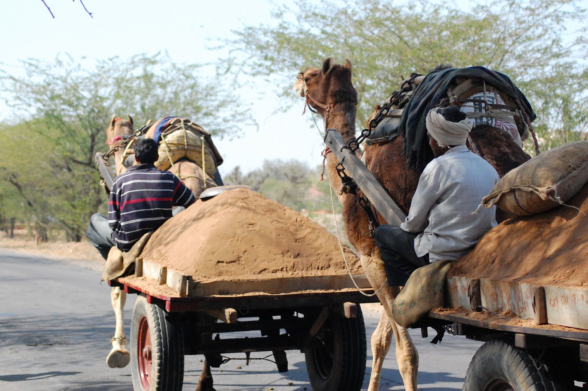 Rajasthan - On the Road by ma.lange.5