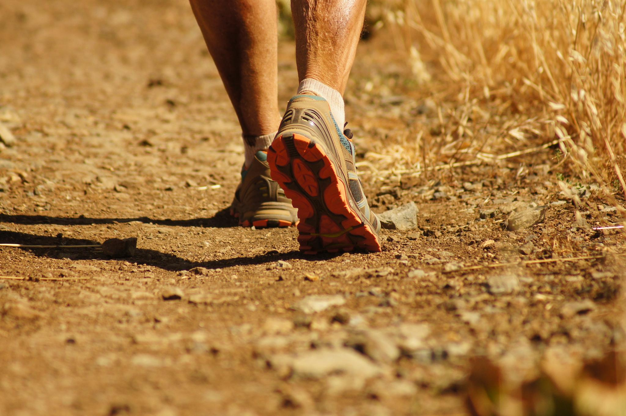 Trail Runner by AudaxPhotography