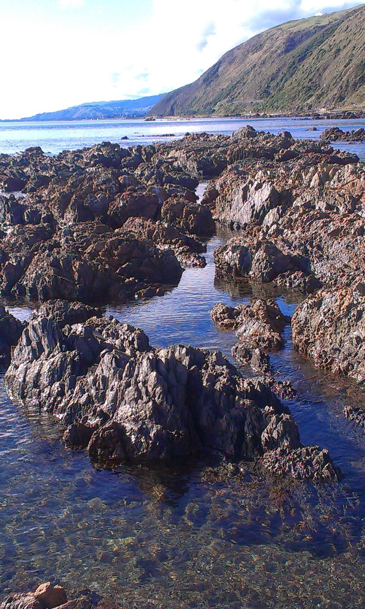 Rock pools by sanz r