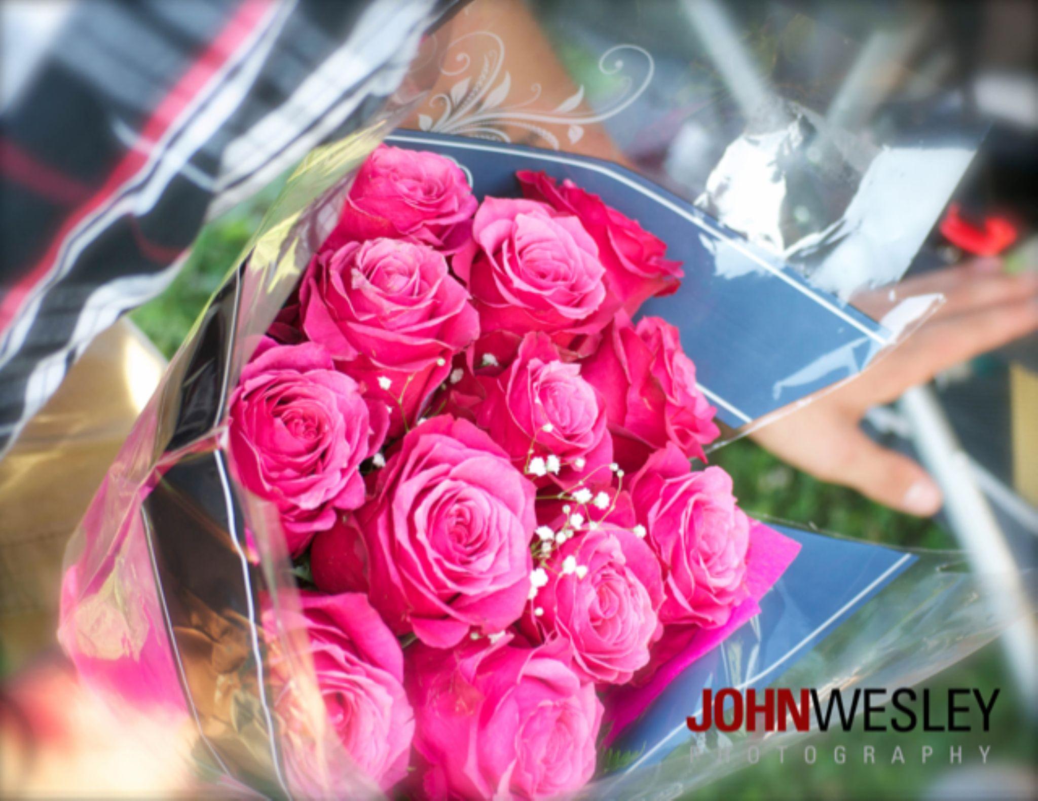 A Pink Dozen by John Wesley Photography