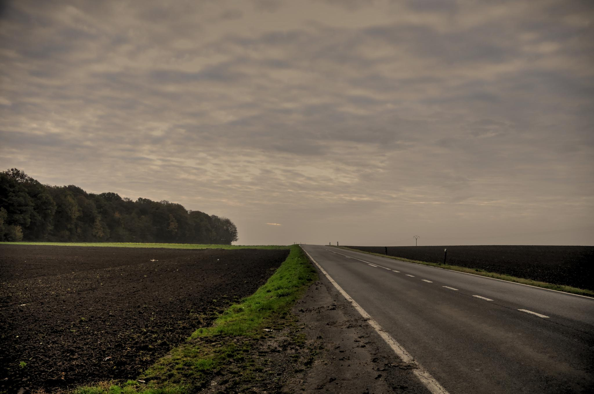 every road tells his story by jean