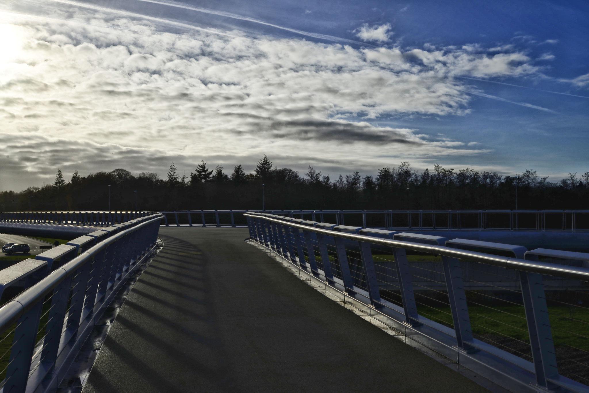 a freeway by jean