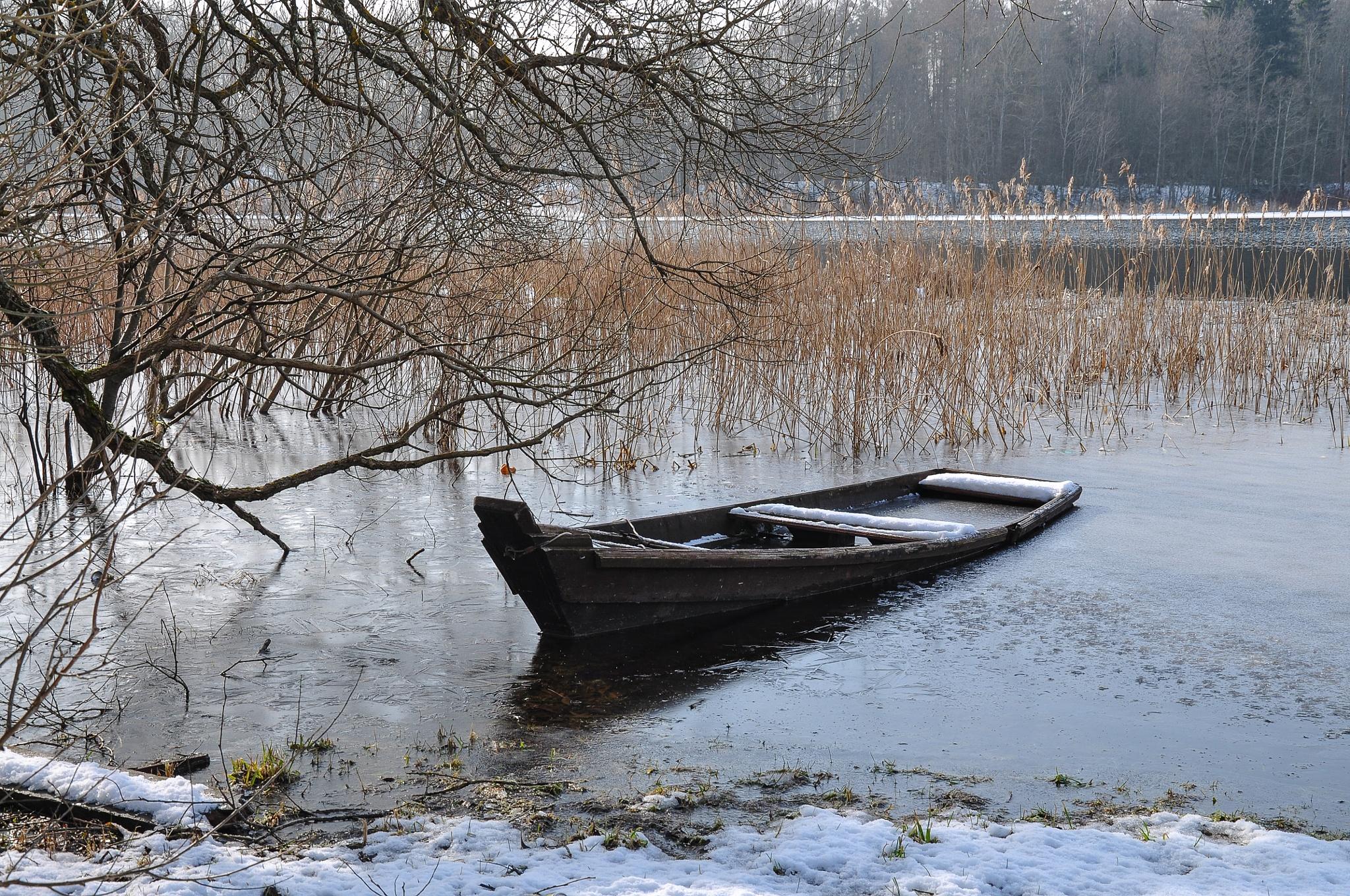 Winter is over by Irena Gedgaudiene