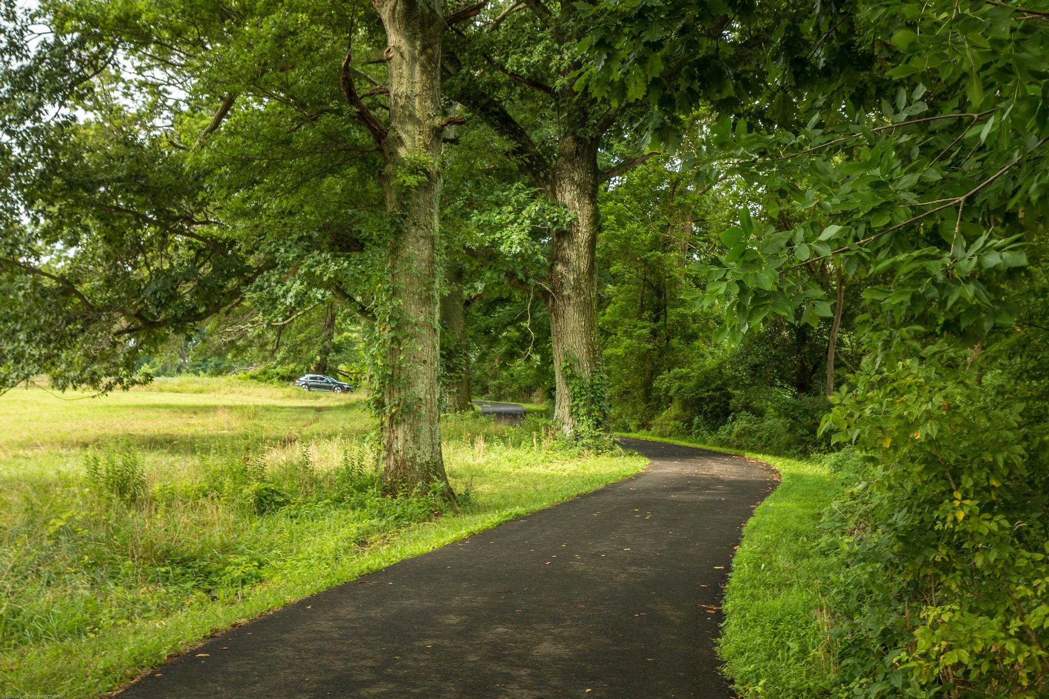 Tyler State Park. by Roland R Kemler