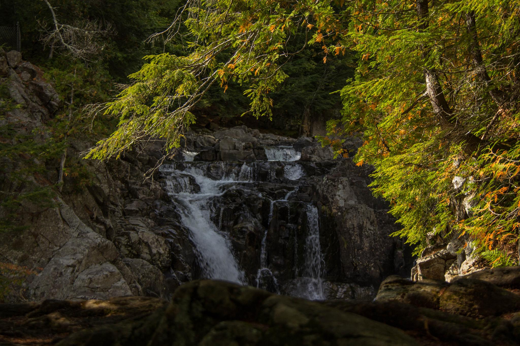 The Adirondack Waterfall by Roland R Kemler