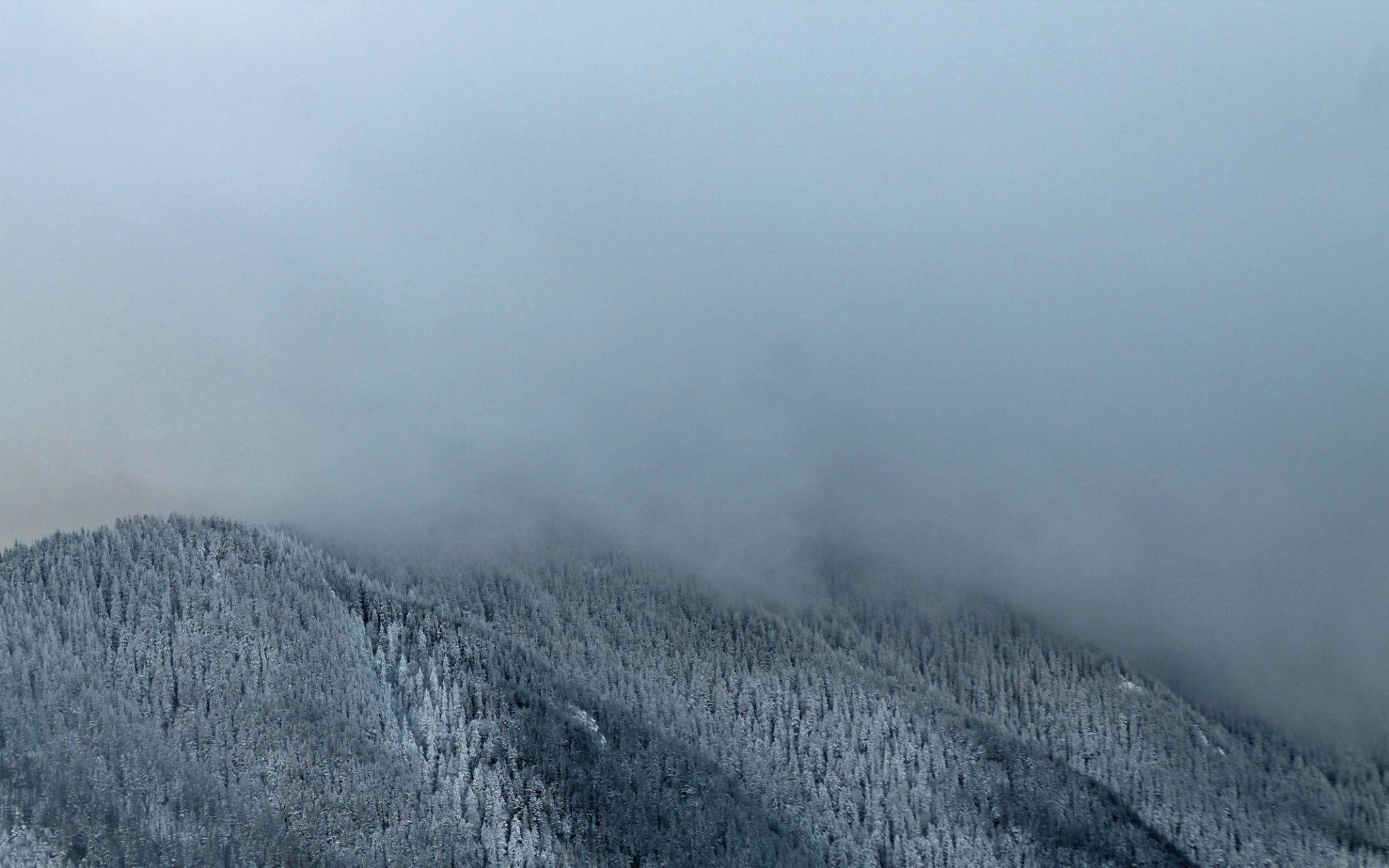 Foggy Peaks by gabi.striblea