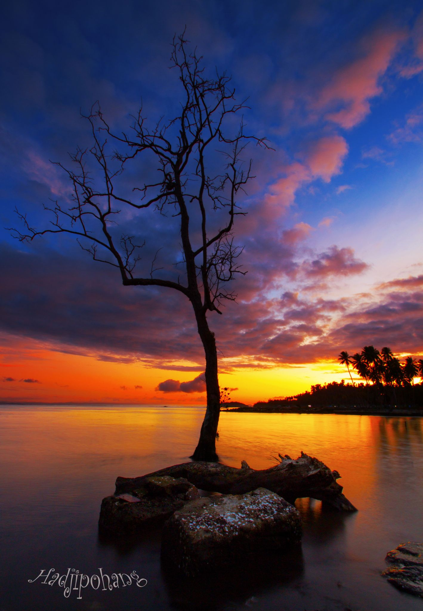 In Papua by Hadjipohang