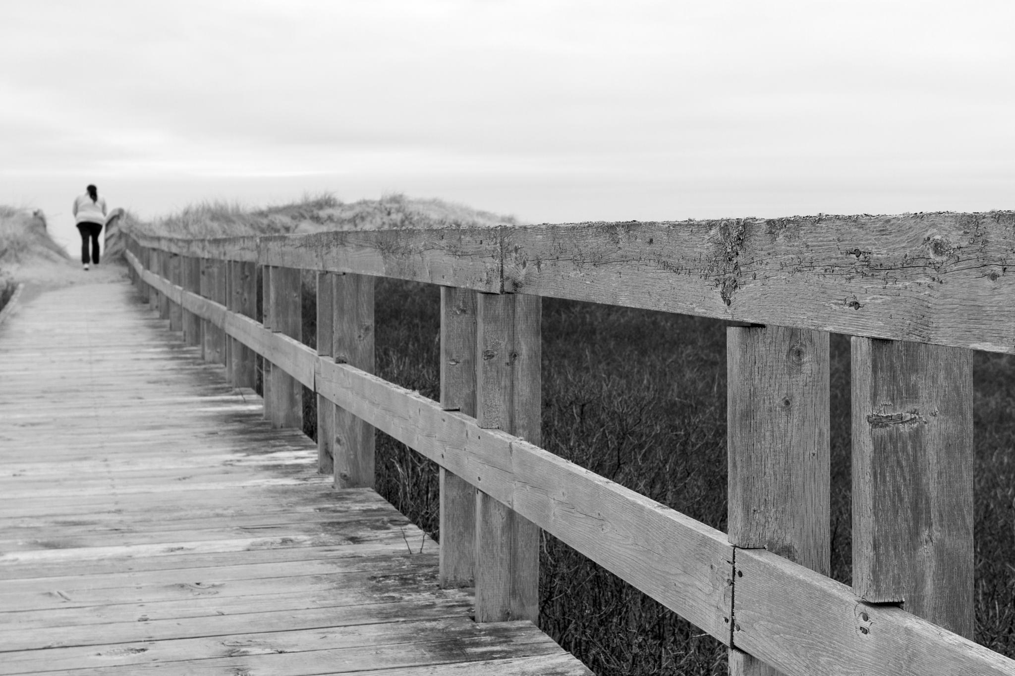 Walk to the Beach by Joe Chrvala