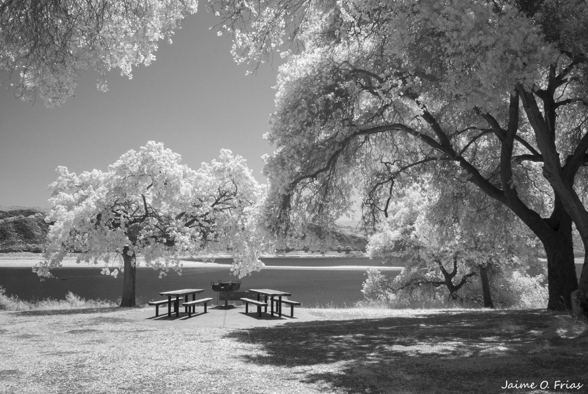 Lake Infrared by Jaime O. Frias
