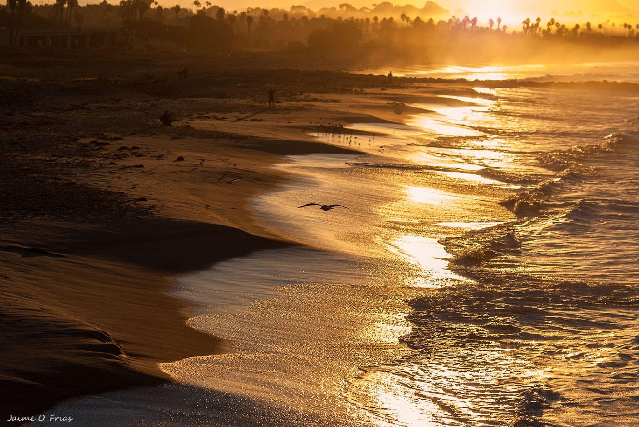 ocean by Jaime O. Frias