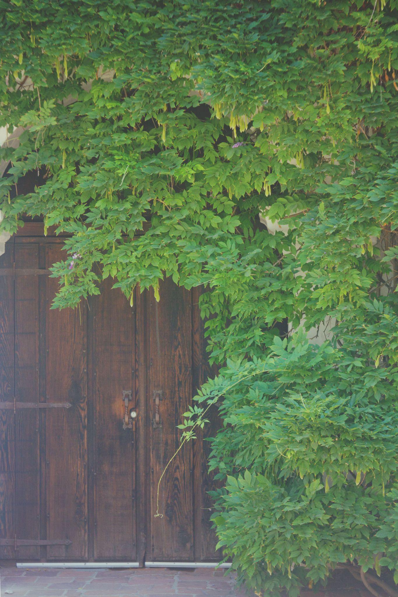 Door at Mission San Luis Rey by amanda.m.wyatt.3