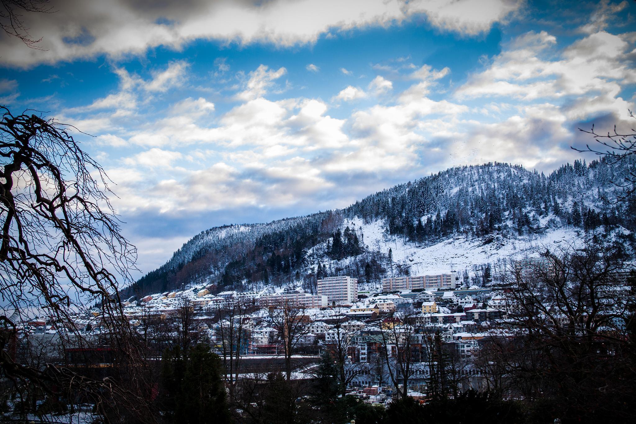 Bergen by SnowWhite8834