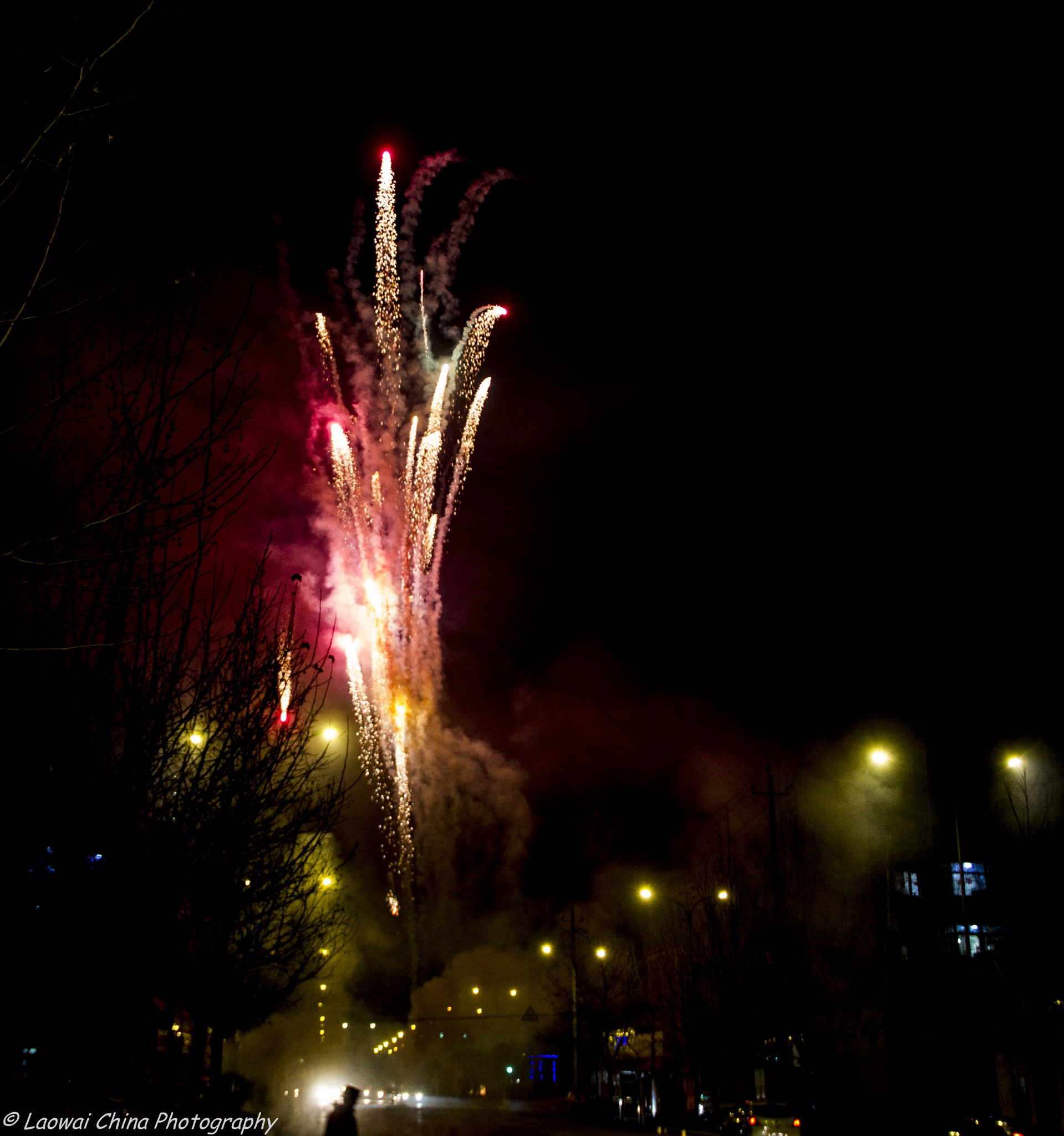Chinese Spring Festival 2016 - The ultimate firework! by Arie Boevé