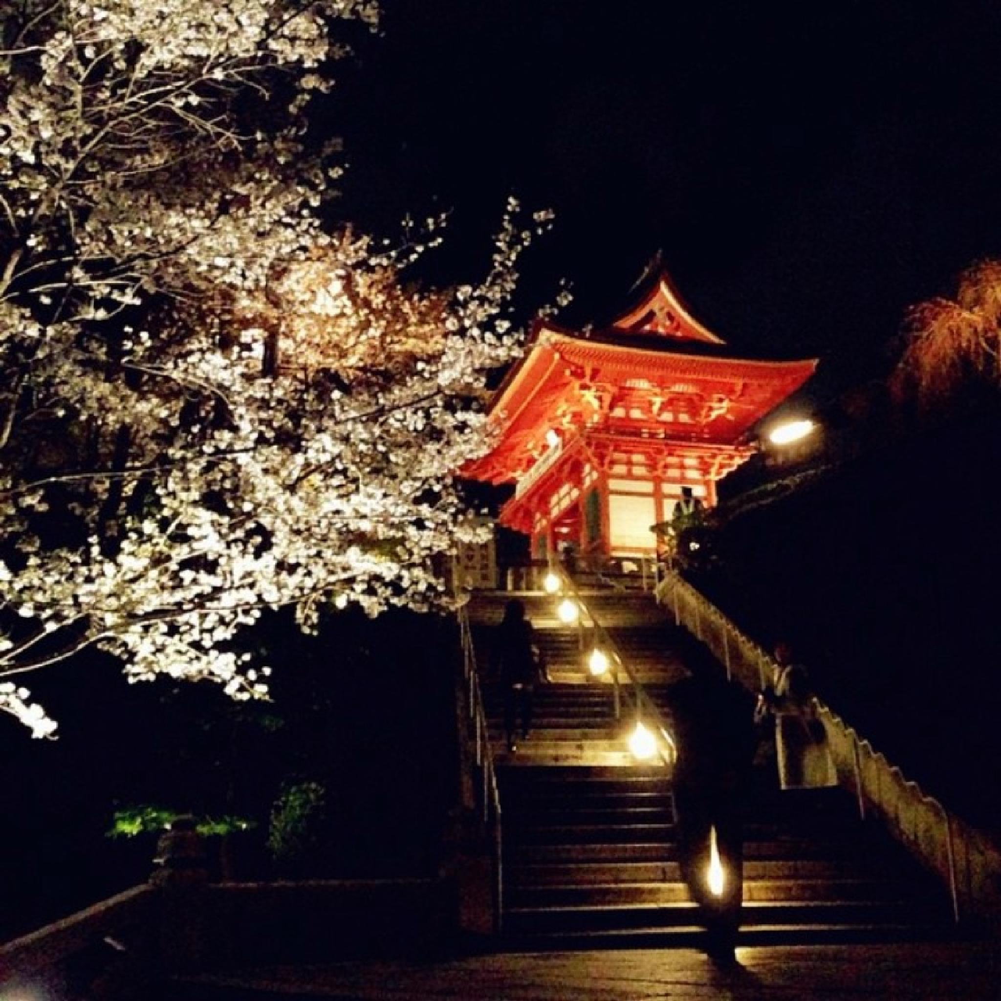 #Higashiyama Temple # by erniisa2