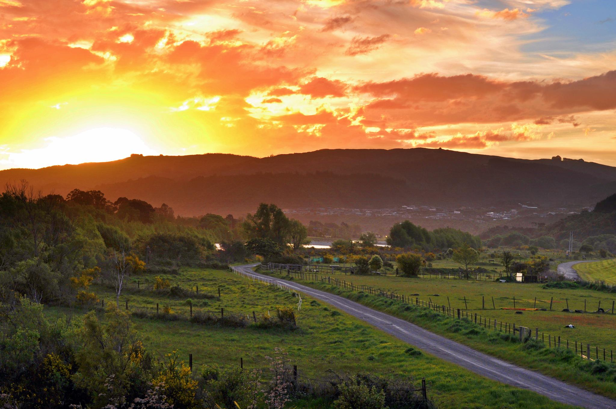 Photo in Landscape #totara park #upper hutt #sunset #awesome #wellington #nz