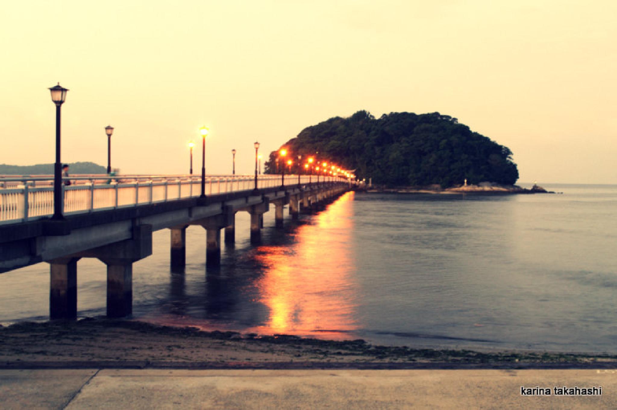 Japan, takeshima island by kao74