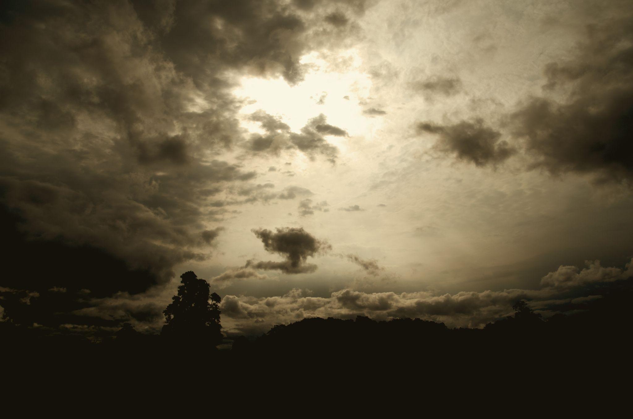 Into the dusk by Arindam Bhattacharjee