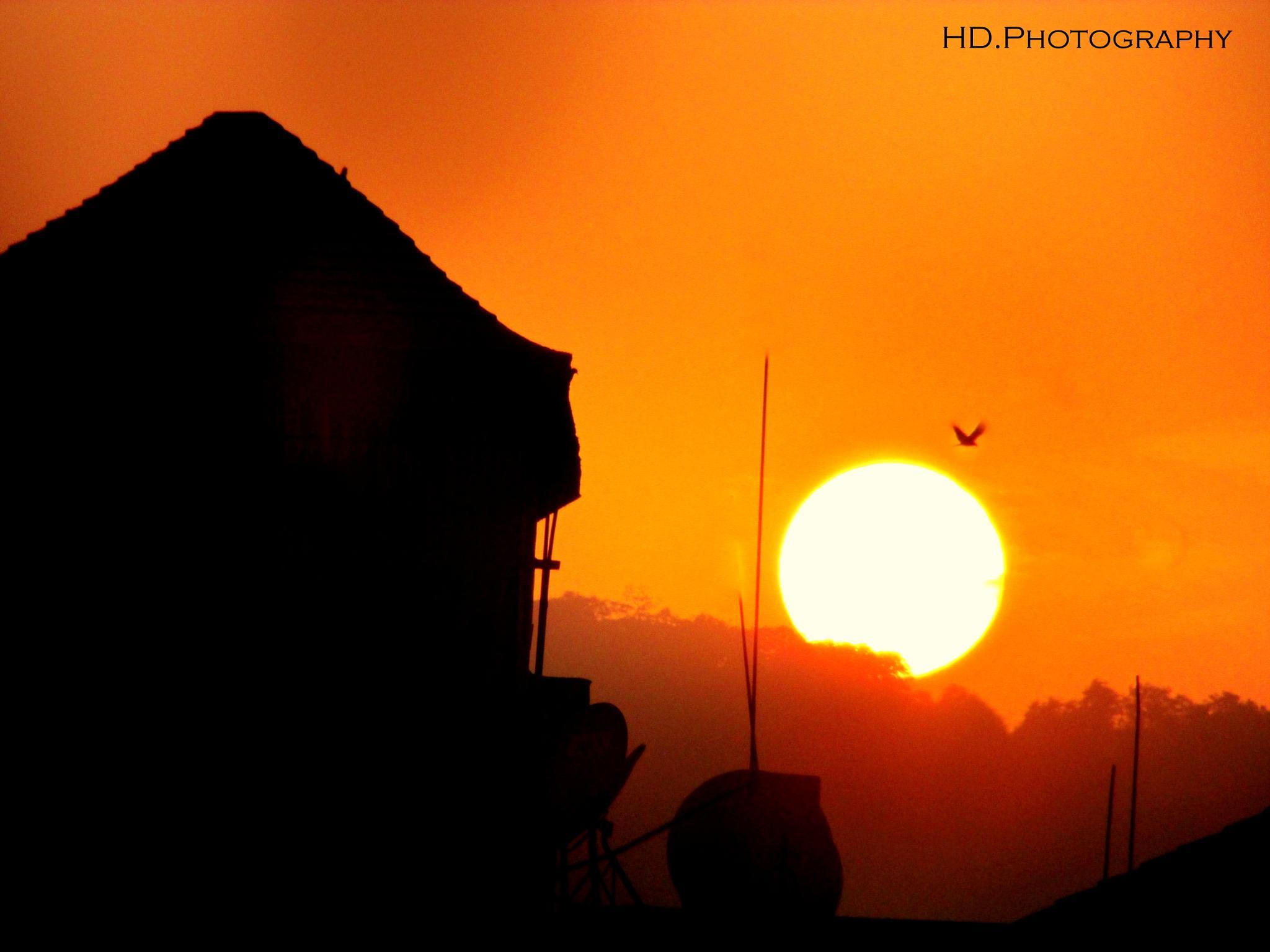 at Summer  by Harshvardhaan Deshmukh
